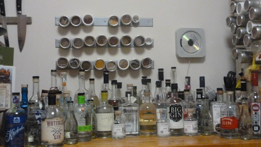 50 States of Gin Tasting: Complete Spread