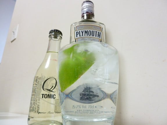 Plymouth Gin and Tonic 2