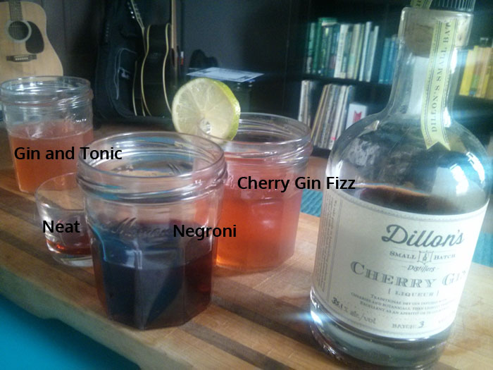 Dillon's Cherry Gin in Cocktails