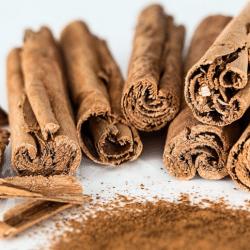 Cinnamomum verum a..k.a. Cinnamon